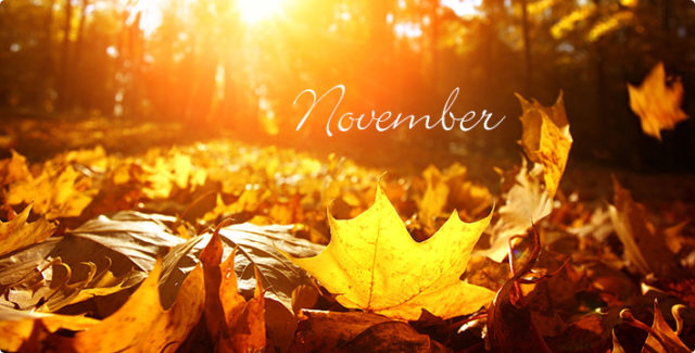 November Gospel News